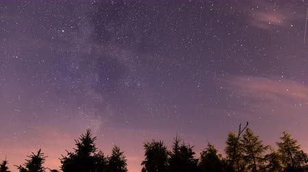 Stars and milky way moving on a night sky above the forest time lapse.