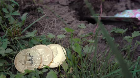 Burying Bitcoin, Litecoin and Ethereum, natural gold coins in soil in the garden. Holding cyprocurrency abstract concept.
