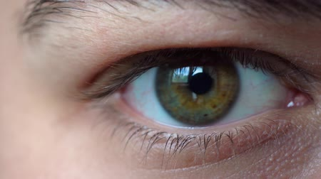 szempillák : Closeup of a colorful heterochromatic eye of a young man blinking.