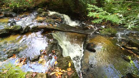 pictured : Upper Chapel Falls in Autumn - Pictured Rocks, Michigan Stock Footage