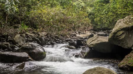 Seamless Loop time lapse video of Iao Valley State Park stream on the beautiful Hawaiian Island of Maui