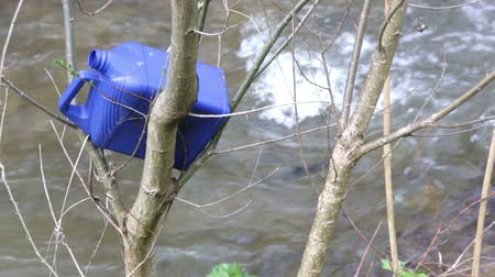 florete : Plastic bottle trash is thrown in the branches of a tree near a river.