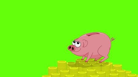 svině : Pink pig money box and falling coins. Green screen