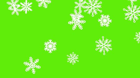 zöld : Different sort of snowflakes, effect snowfall. Green screen Stock mozgókép