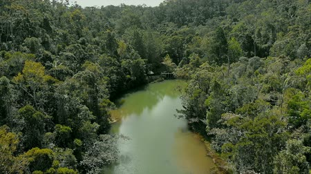 AERIAL: River in the middle of Rainforest in Madagascar