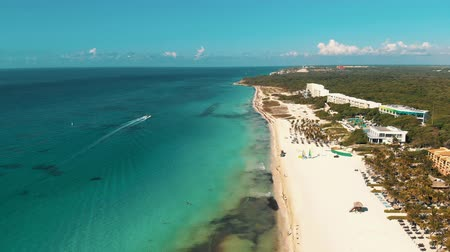 maia : Aerial view of Riviera Maya beach. 4k drone video of Playa del Carmen with palm trees and beautiful turquoise water of Carribean Sea Vídeos