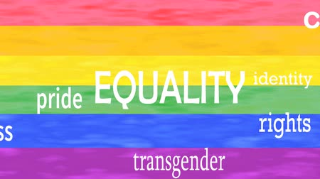 Illustration of Equality word lettering isolated on lgbt flag colors background. Vídeos