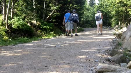 kopec : Group of people hikes in mountains