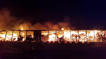 bina : Fire at the industrial warehouse Stok Video