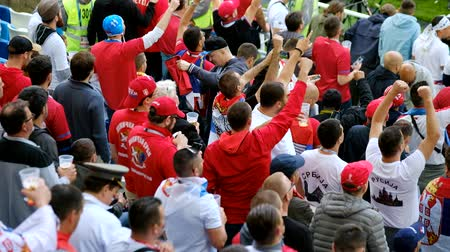 sérvia : Kaliningrad - Russia, June 22, 2018: Football fans support teams on the match between Serbia and Switzerland