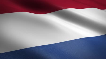 dignité : Flag of the Netherlands - waving flag with highly detailed fabric texture seamless loopable video. Seamless loop with highly detailed fabric texture. Loop ready in HD resolution
