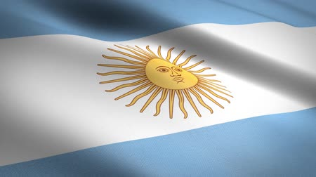 národnost : Flag of Argentina. Waving flag with highly detailed fabric texture seamless loopable video. Seamless loop with highly detailed fabric texture. Loop ready in HD resolution