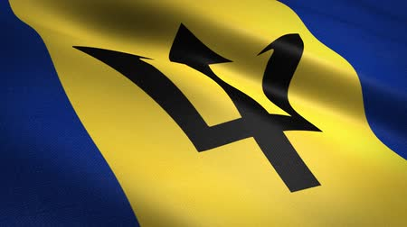 barbados : Flag of Barbados. Waving flag with highly detailed fabric texture seamless loopable video. Seamless loop with highly detailed fabric texture. Loop ready in HD resolution