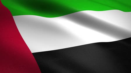 národnost : Flag of United Arab Emirates. Waving flag with highly detailed fabric texture seamless loopable video. Seamless loop with highly detailed fabric texture. Loop ready in HD resolution Dostupné videozáznamy