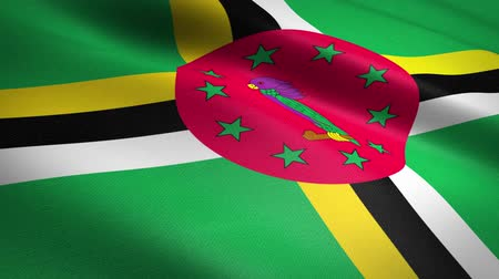 národnost : Flag of Dominica. Waving flag with highly detailed fabric texture seamless loopable video. Seamless loop with highly detailed fabric texture. Loop ready in HD resolution