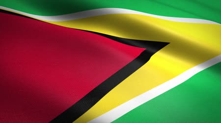 Észak amerika : Flag of Guyana. Waving flag with highly detailed fabric texture seamless loopable video. Seamless loop with highly detailed fabric texture. Loop ready in HD resolution Stock mozgókép