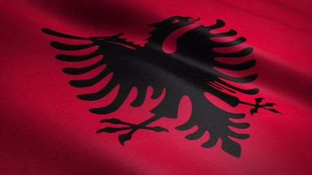 Albania seamless loop video. Seamless loop with highly detailed fabric texture. Loop ready in 4K resolution