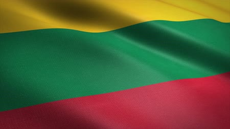 Flag of Lithuania. Waving flag with highly detailed fabric texture seamless loopable video. Seamless loop with highly detailed fabric texture. Loop ready in 4K resolution