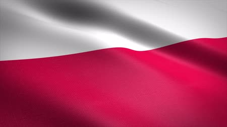 Flag of Poland. Waving flag with highly detailed fabric texture seamless loopable video. Seamless loop with highly detailed fabric texture. Loop ready in 4K resolution