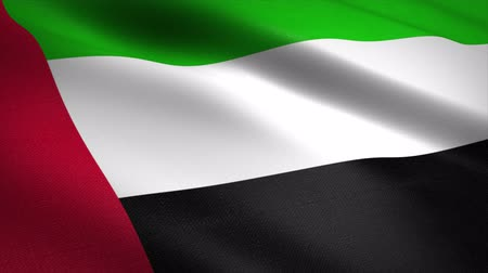Flag of United Arab Emirates. Waving flag with highly detailed fabric texture seamless loopable video. Seamless loop with highly detailed fabric texture. Loop ready in 4K resolution Filmati Stock