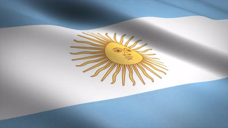 aires : Flag of Argentina. Waving flag with highly detailed fabric texture seamless loopable video. Seamless loop with highly detailed fabric texture. Loop ready in 4K resolution