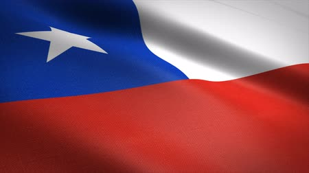 Flag of Chile. Waving flag with highly detailed fabric texture seamless loopable video. Seamless loop with highly detailed fabric texture. Loop ready in 4K resolution Stock mozgókép