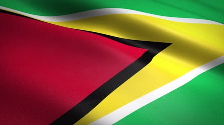 Flag of Guyana. Waving flag with highly detailed fabric texture seamless loopable video. Seamless loop with highly detailed fabric texture. Loop ready in 4K resolution