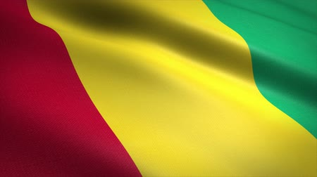 Flag of Guinea. Waving flag with highly detailed fabric texture seamless loopable video. Seamless loop with highly detailed fabric texture. Loop ready in 4K resolution