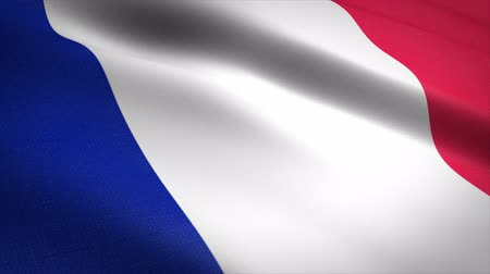 France Flag Loop - waving flag with highly detailed fabric texture seamless loop video. Seamless loop with highly detailed fabric texture. Loop ready in 4K resolution