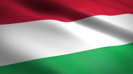 Flag of Hungary. Waving flag with highly detailed fabric texture seamless loopable video. Seamless loop with highly detailed fabric texture. Loop ready in HD resolution