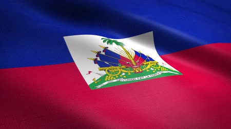 Flag of Haiti. Waving flag with highly detailed fabric texture seamless loopable video. Seamless loop with highly detailed fabric texture. Loop ready in 4K resolution