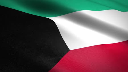 nationality : Flag of the State of Kuwait. Waving flag with highly detailed fabric texture seamless loopable video. Seamless loop with highly detailed fabric texture. Loop ready in HD resolution Stock Footage