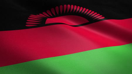 malawi : Flag of Malawi. Waving flag with highly detailed fabric texture seamless loopable video. Seamless loop with highly detailed fabric texture. Loop ready in HD resolution Stock Footage