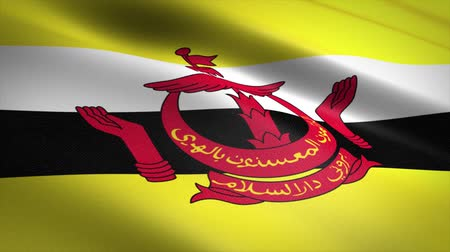 borneo : Flag of Brunei. Waving flag with highly detailed fabric texture seamless loopable video. Seamless loop with highly detailed fabric texture. Loop ready in 4K resolution