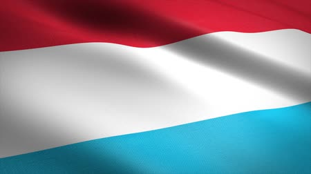 luxemburg : Flag of Luxembourg. Waving flag with highly detailed fabric texture seamless loopable video. Seamless loop with highly detailed fabric texture. Loop ready in HD resolution Stockvideo