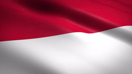 nationality : Flag of Indonesia. Waving flag with highly detailed fabric texture seamless loopable video. Seamless loop with highly detailed fabric texture. Loop ready in 4K resolution