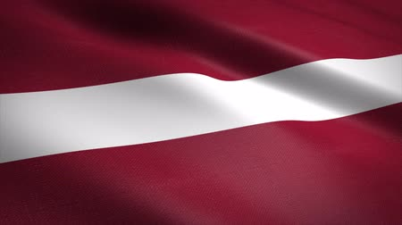 Латвия : Flag of Latvia. Waving flag with highly detailed fabric texture seamless loopable video. Seamless loop with highly detailed fabric texture. Loop ready in 4K resolution Стоковые видеозаписи