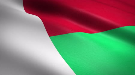 madagaskar : Flag of Madagascar. Waving flag with highly detailed fabric texture seamless loopable video. Seamless loop with highly detailed fabric texture. Loop ready in 4K resolution Stok Video