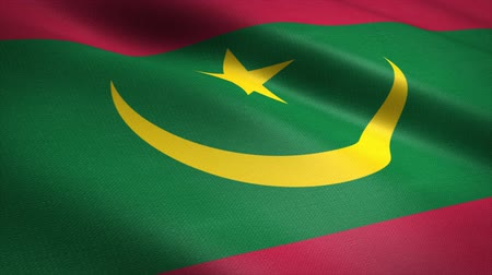 oy : Flag of Mauritania. Waving flag with highly detailed fabric texture seamless loopable video. Seamless loop with highly detailed fabric texture. Loop ready in 4K resolution