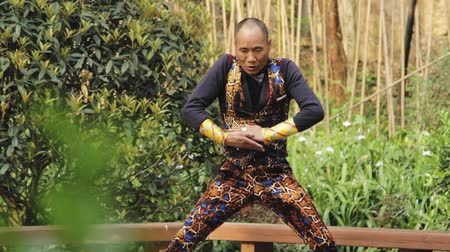 An elderly man in China performing tai chi exercises in a park with bamboo trees in the background Dostupné videozáznamy