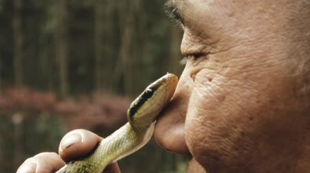 An elderly asian man playfully staring at a snake while holding it close to his nose Dostupné videozáznamy