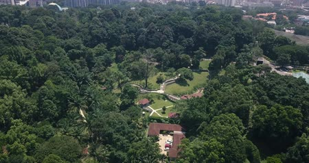 kl : Aerial view of Malaysia, Kuala Lumpur of trees, forests, parks and city skyline with tall skyscrapers Stock Footage