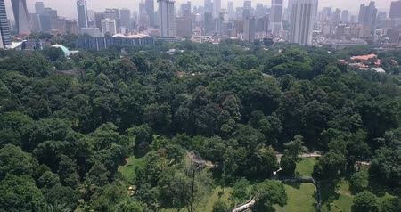 Aerial view of Malaysia, Kuala Lumpur of trees, forests, parks and city skyline with tall skyscrapers Dostupné videozáznamy