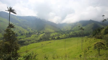Анды : Dramatic clouds above the Cocora Valley near Salento, Colombia.