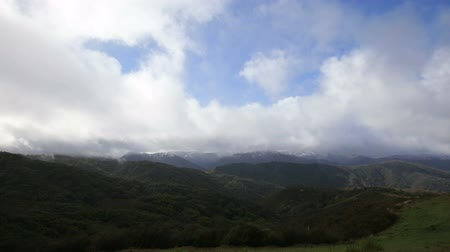 esőerdő : Snow storm clouds pass through the Los Padres National Forest in California. Stock mozgókép