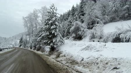 морозный : View of an empty road in the mountains during winter with snow covered trees on the side.