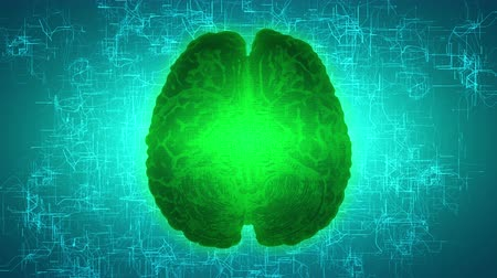 intelligencia : Glowing green brain wired on neural surface or electronic conductors. Artificial intelligence (AI) and High Tech Concept.