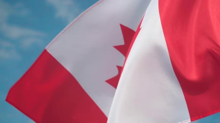 canadian maple leaf : Flag of Canada. The flag of Canada develops in the wind against a clean blue sky. Stock Footage