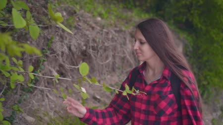 camping : Medium shot of a young attractive girl in a red checkered shirt. The girl walks along the road along the green shrubs and sniffs a flower on a warm day. Stockvideo