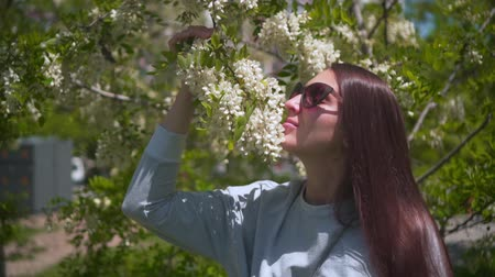 The woman gently touches and sniffs white acacia. Beautiful woman in sunglasses and a beautiful smelling acacia blooming in the park. The concept of human unity with nature Wideo